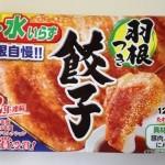 大阪王将の羽根つき餃子はお店のギョーザよりも美味いですから